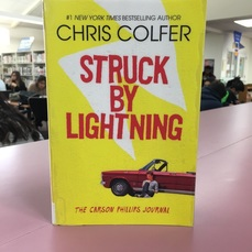 Struck by Lightning Book Cover